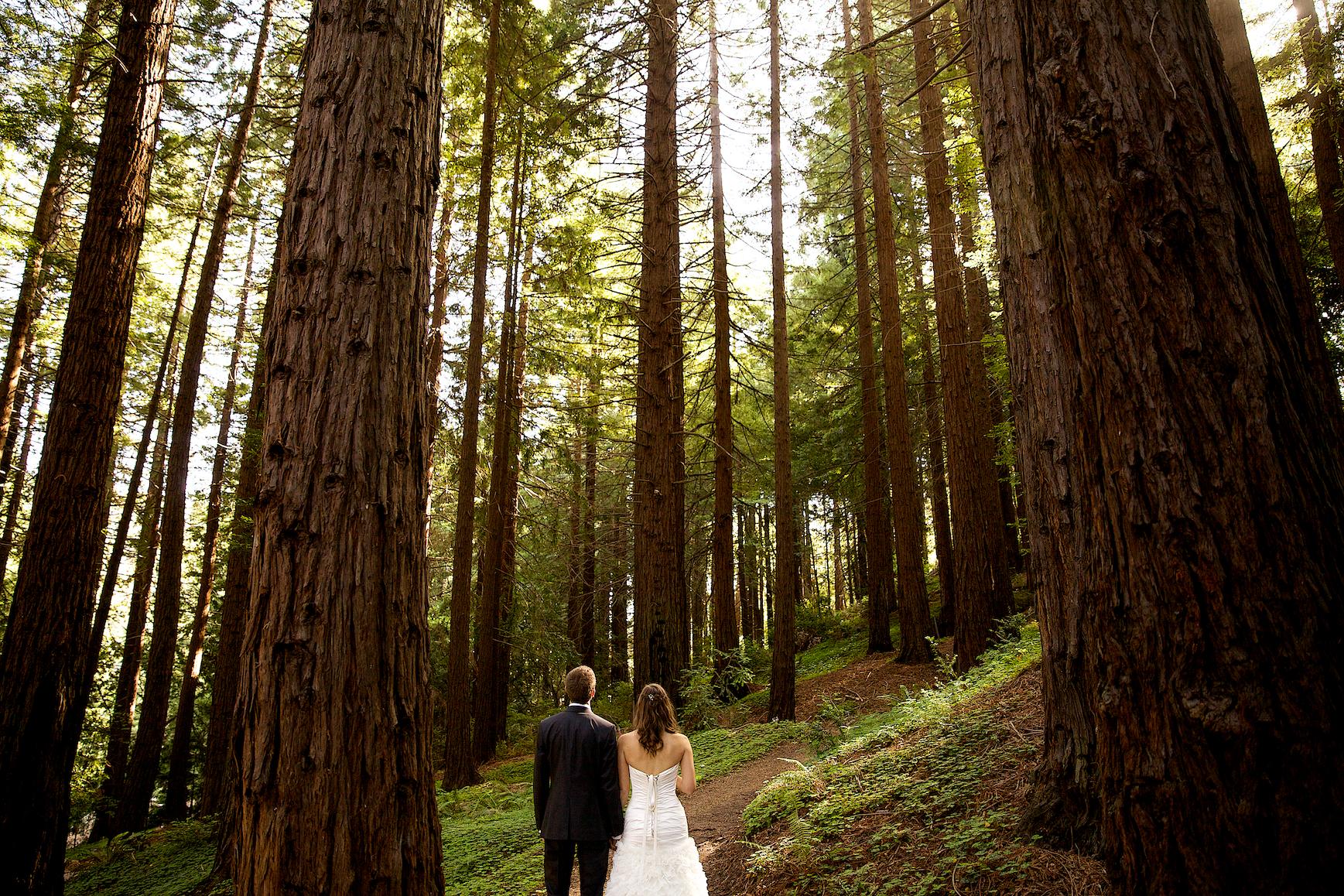 Stephanie and Greg\'s Wedding | San Francisco Bay Area Wedding ...