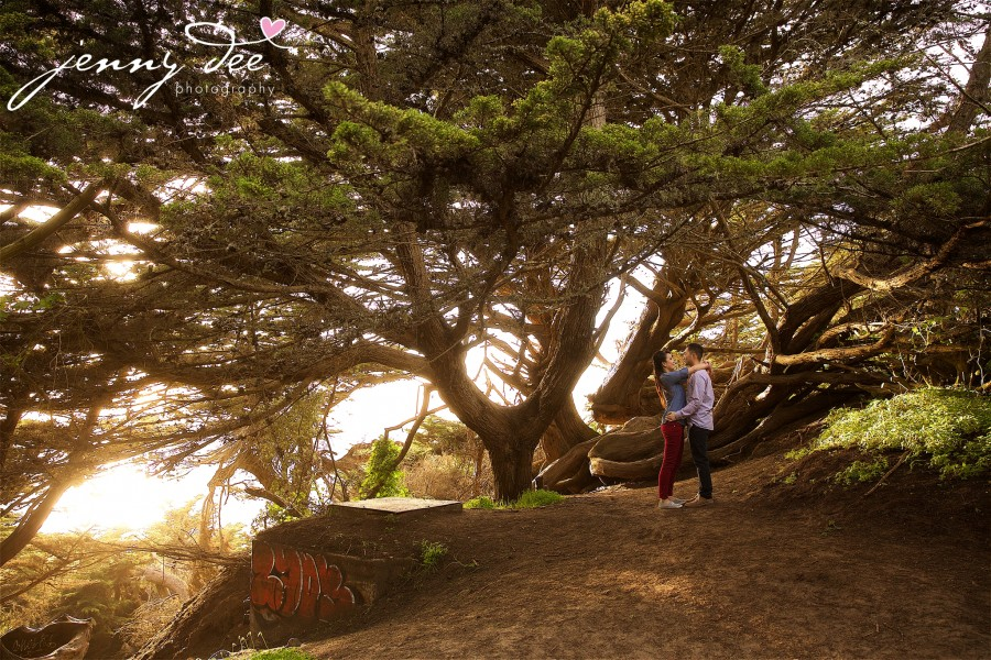 Engagement at Point Lobos and Sutro Bathhouse in San Francisco 6