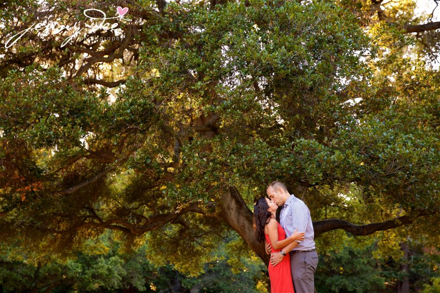 Allie and Stan's Engagement photos at the UC Berkeley campus 11